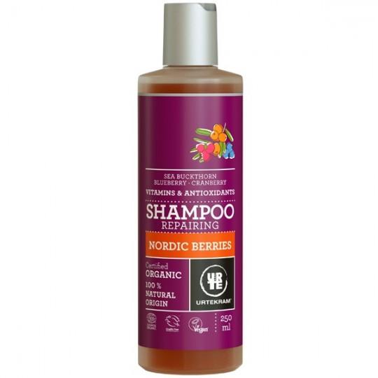 Shampoing aux Baies Nordiques antioxydantes - Réparateur