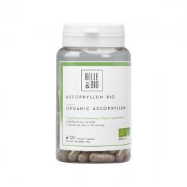 Ascophyllum Bio 120 Gélules - Brûle graisse