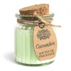 CADEAU : Bougie en pot à la cire de soja - Concombre
