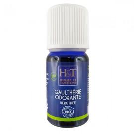 Huile Essentielle de Gaulthérie Odorante 10 ml