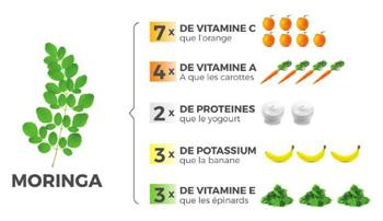 comparaison nutritive avec la poudre de moringa