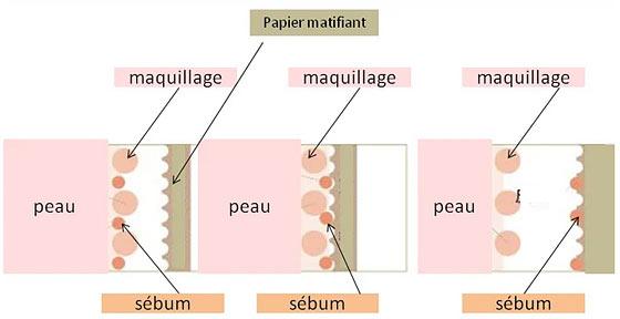 Infographie : Comment agit le papier absorbant sur le visage et sur la peau ?