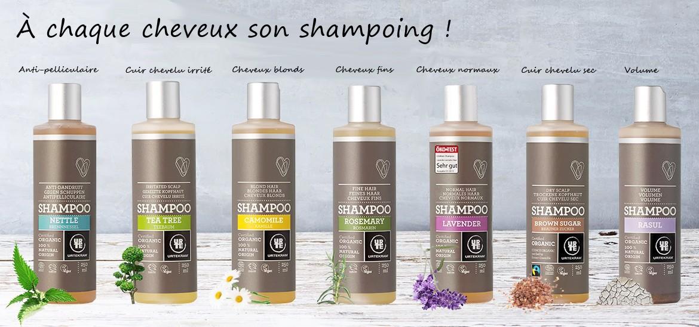 Shampooing Urtekram